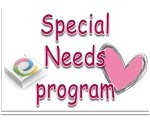 special needs lego